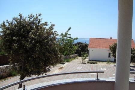 Apartment Antonija - Mandre - Apartament
