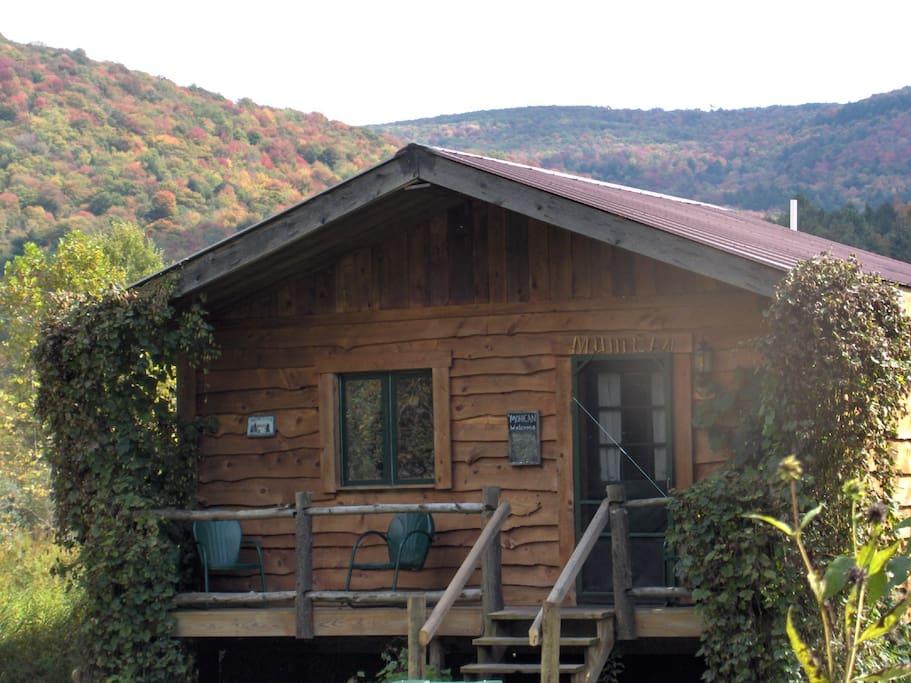 Catskill riverside cabin lenape cottages for rent in for New york cabin