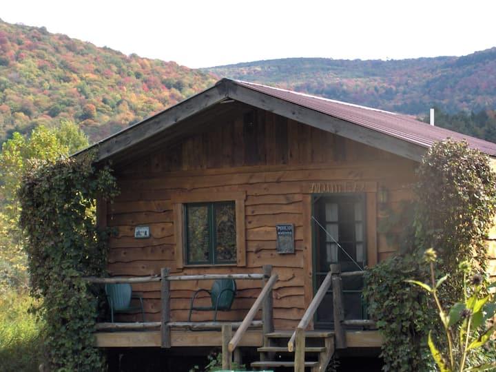 """Catskill Riverside """"Lenape"""" Cabin"""