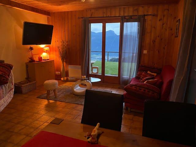 Appartement aux Granges sur Salvan - 10 minutes de Martigny - Train TMR reliant Martigny-Chamonix, petit village de montagne avec une station de ski TéléMarécottes et le fameux Zoo Alpin et sa piscine pour des vacances reposantes et sportives