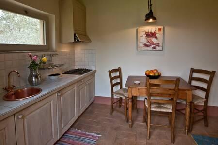 Gelsomino house,1 double bedroom. - Cetona