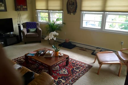 Bright & Well-Decorated 1 Bedroom - Sea Cliff - Huoneisto