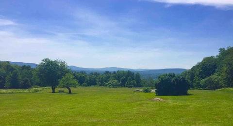 Berkshire Charm w/ Panoramic views