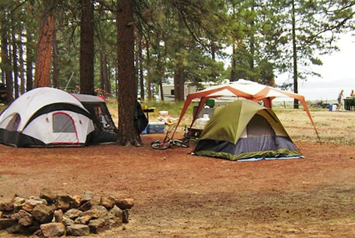 Tent Campsite in Clean Park with Amenities