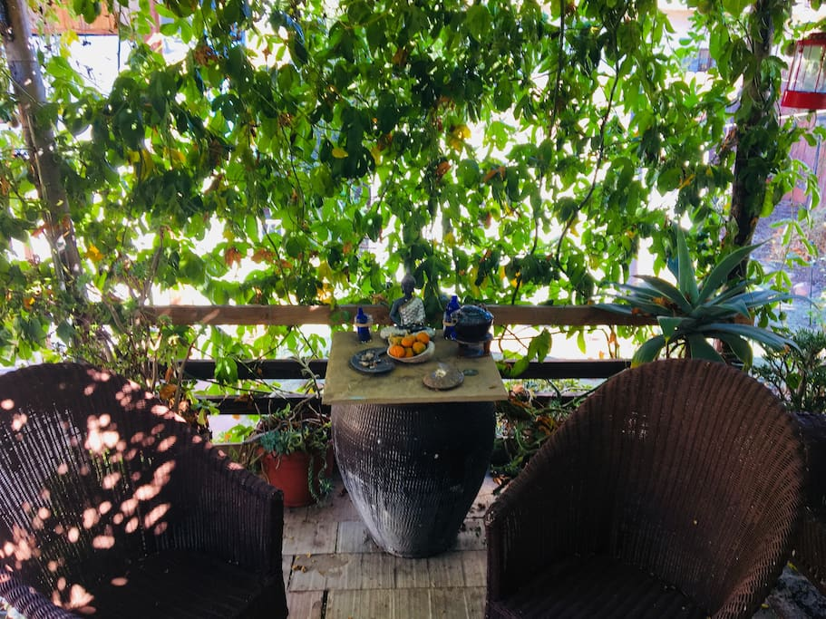 Small meditation enclosed vine covered front patio, with 2 patio chairs and table.