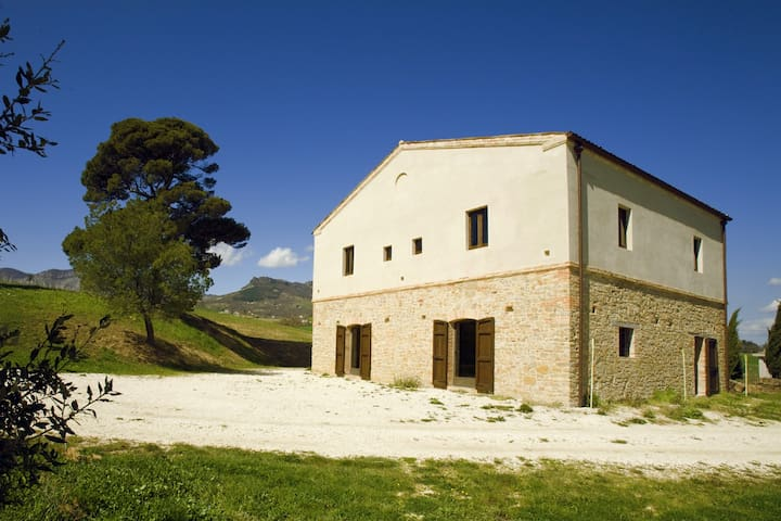Stone farmhouse in olive trees - Civitella Casanova - Hus