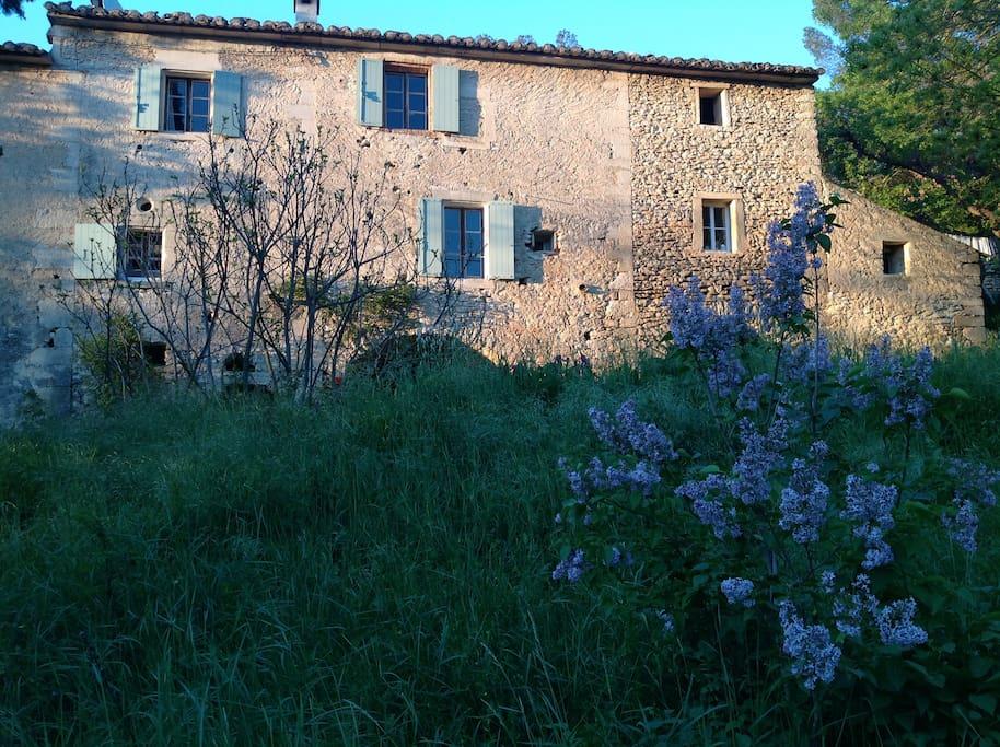 Façade de la maison côté sud avec les lilas