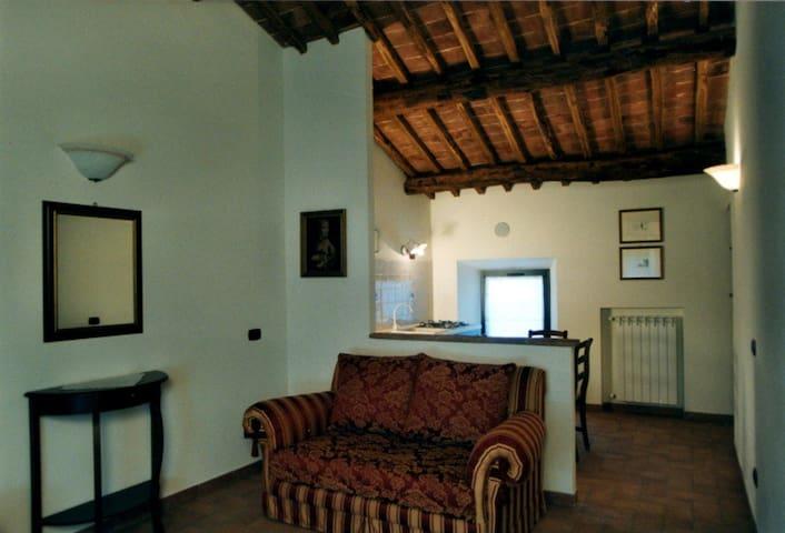 Granaio: bilocale in antico casale - Sovicille - Lägenhet