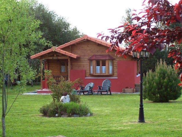 Apartamentos El Cueto (Cabaña)