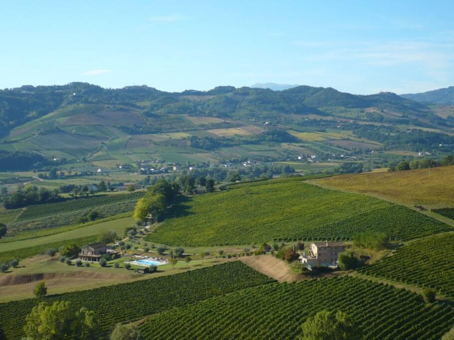 Panoramica degli Agriturismi