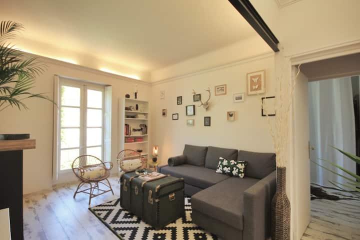 Large apartment Avignon center / Terrace and A/C