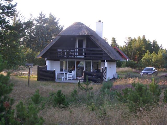 Dejligt stråtækt sommerhus - Bordrup Klitplantage / Oksby K
