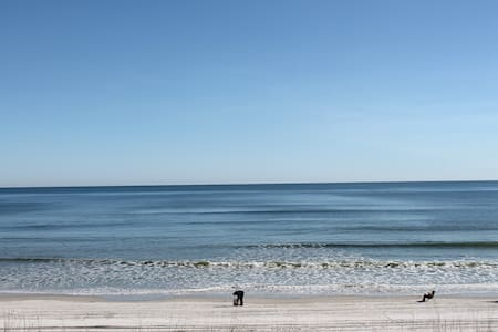Summerhouse 362, Direct Ocean Front - St. Augustine - Appartement