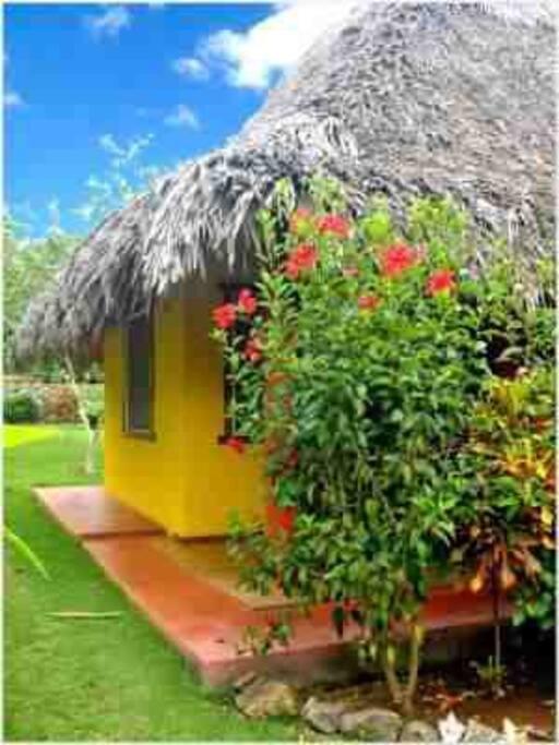 maison polynésienne dans un jardin sous les tropiques cacher au regards de tous