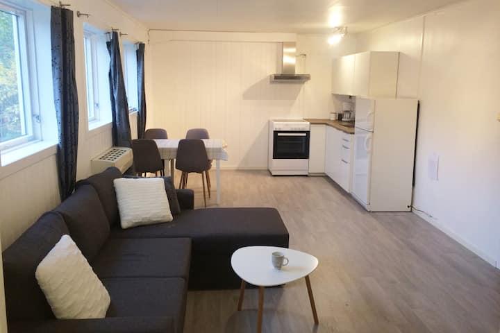Renovated apartment near city center