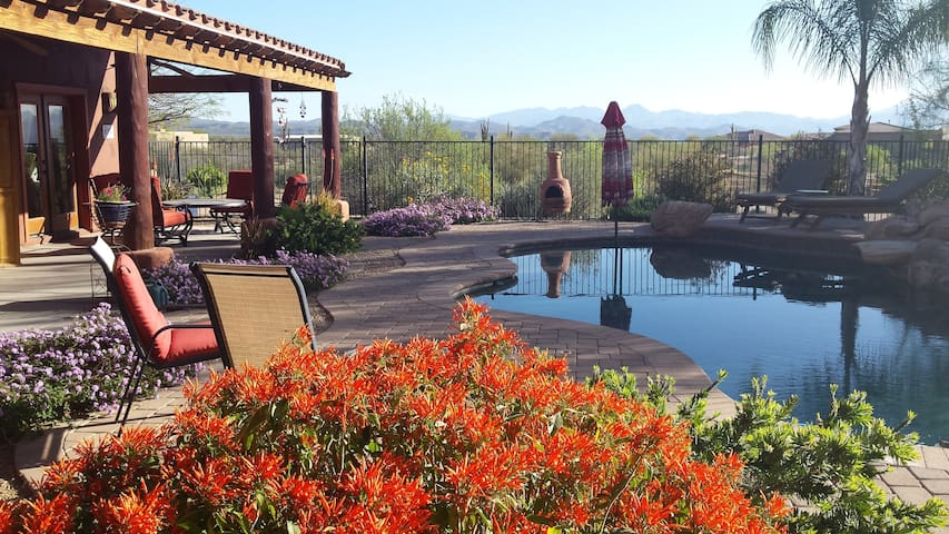 Beauty of the Sonoran Desert  North Scottsdale