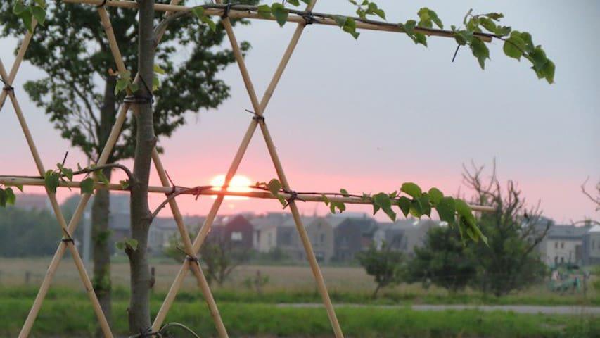 De Wijde Blick - chalet with a view - Ilpendam