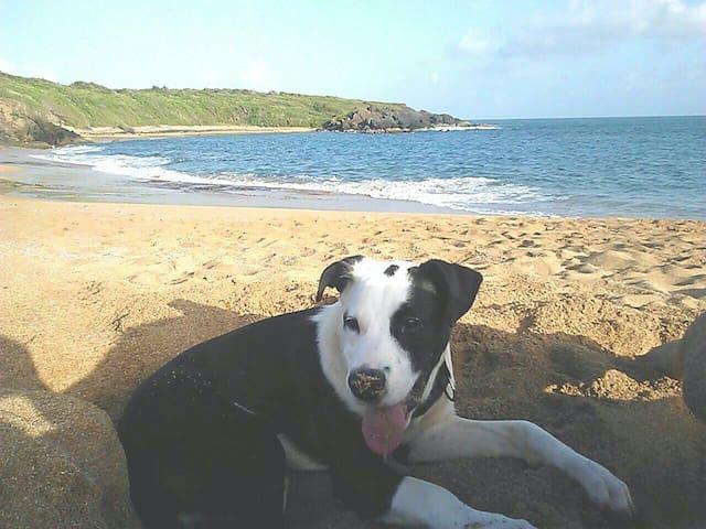 Hidden beach .. Playa colora