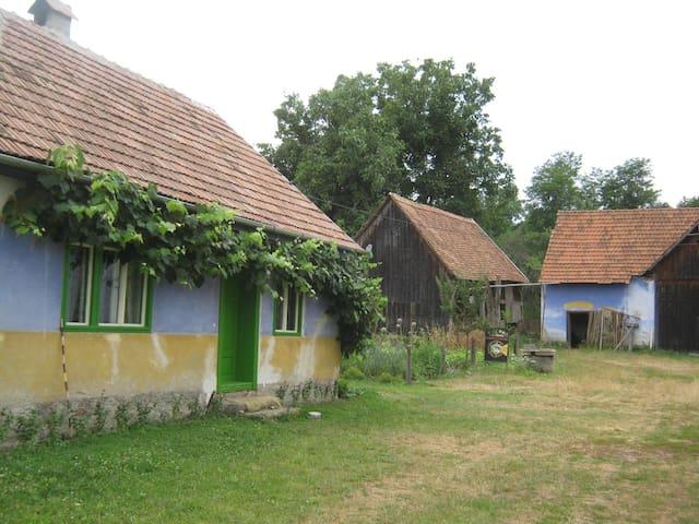 Vakantiehuisje in Sarata - Sărata - Casa
