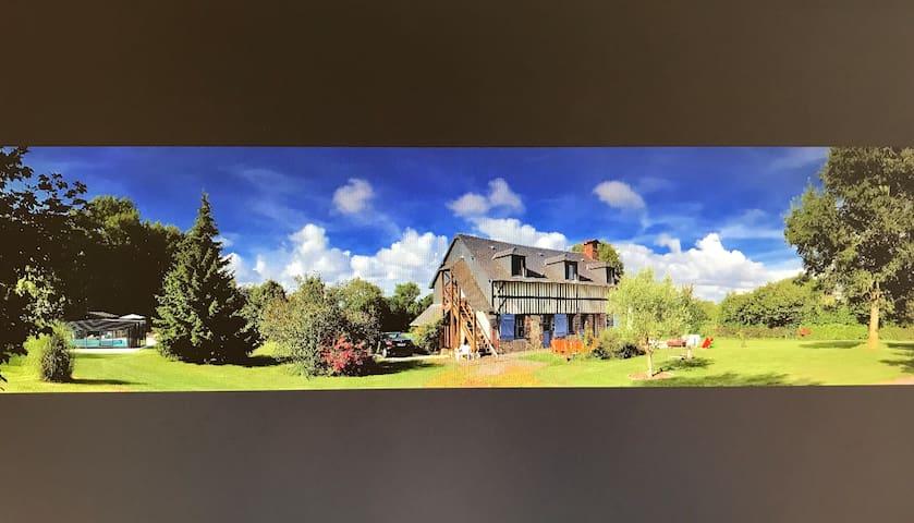 La maison cabane et sa piscine