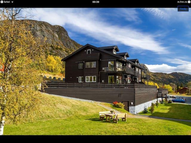 Nybyggd lägenhet i Hemsedal centrum - Hemsedal