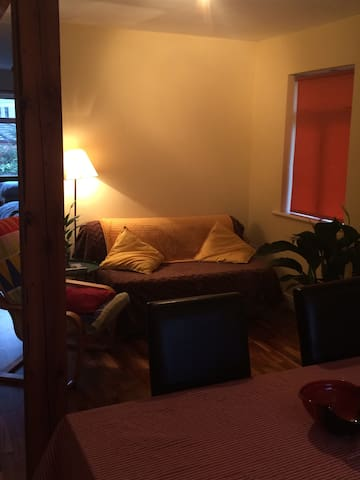 Lovely spacious studio apartment - Wicklow - Apartamento
