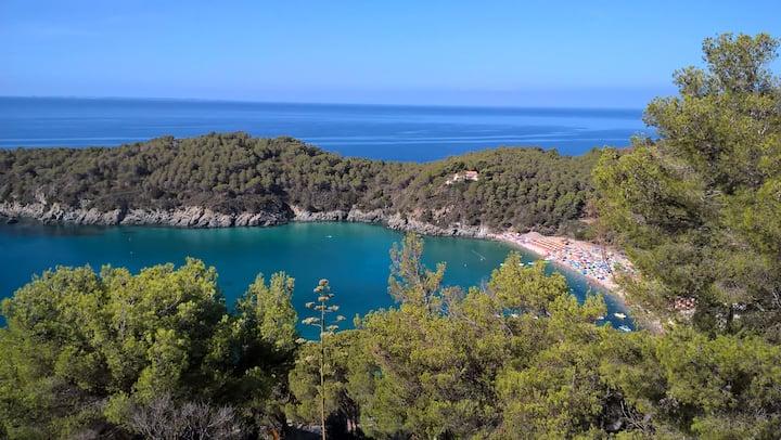 Villa  with  view on  Fetovaia bay , Elba Island