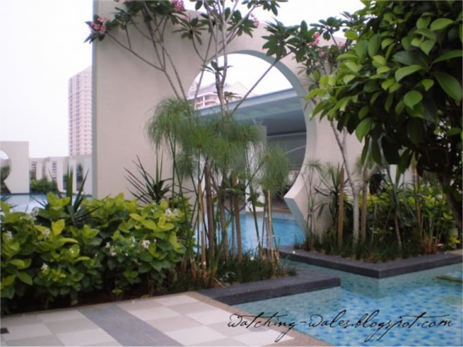 25m swimming pool + wading and jacuzzi pools. Feel free to use the pool for a morning, night dip or just anytime you like