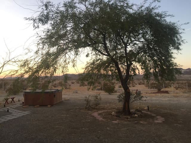 Backyard with hot tub and mesquite tree