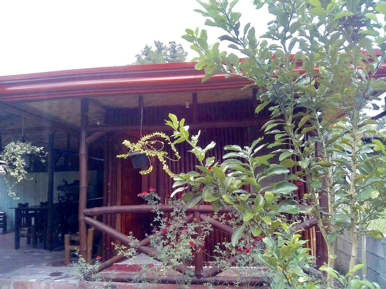 BAMBOO HOUSE #3