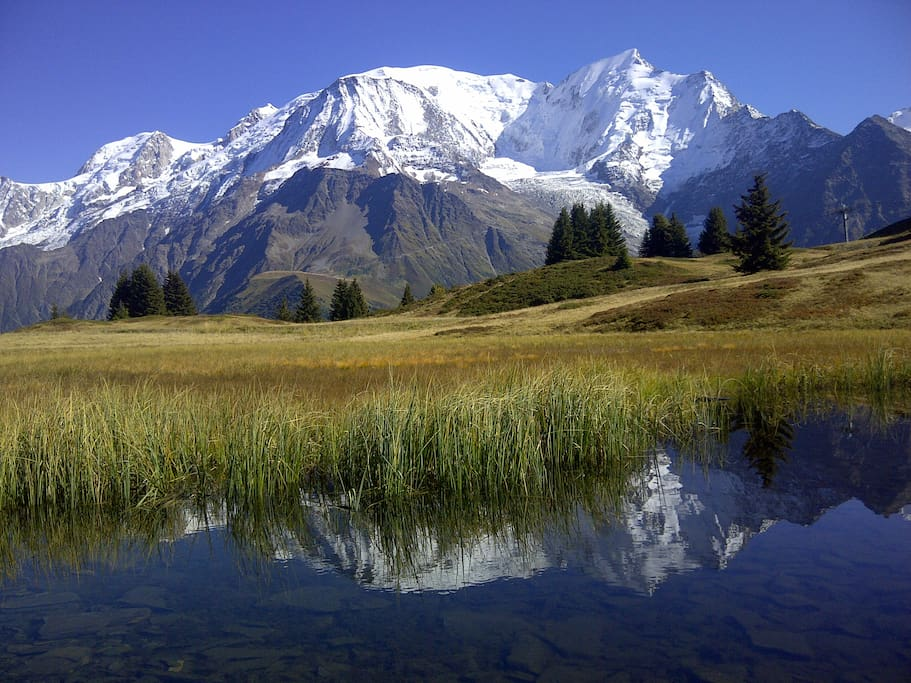Mt Blanc from Prarion