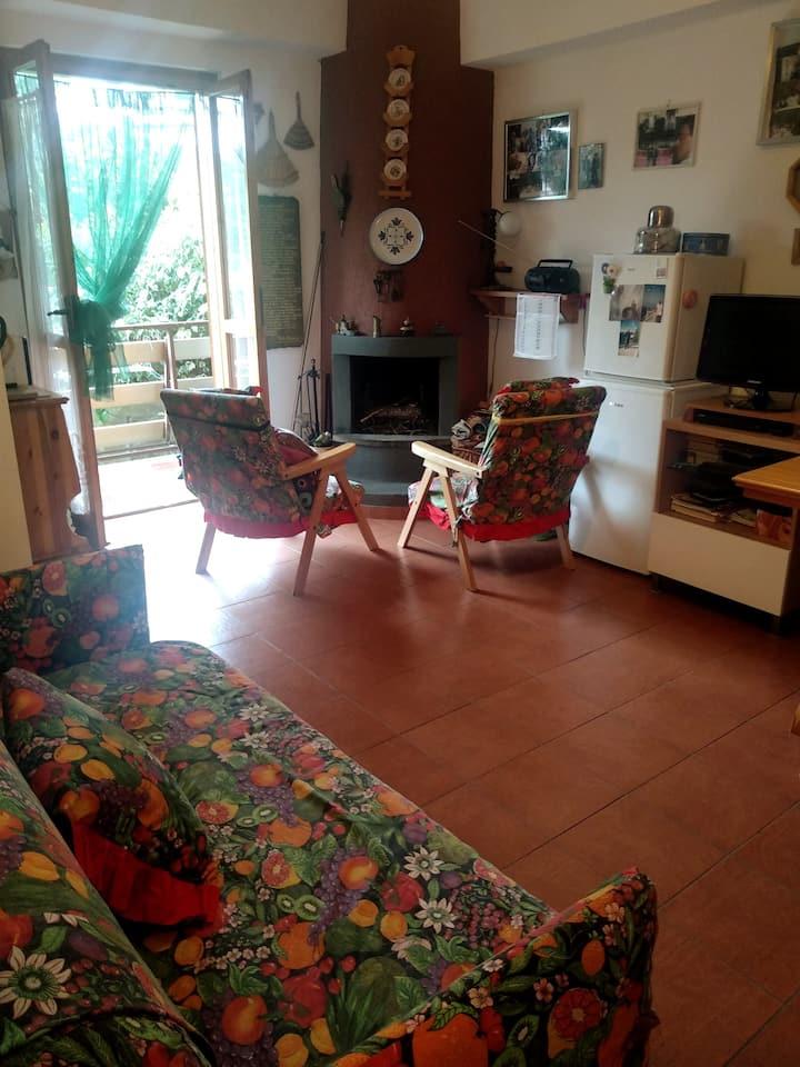 Altipiani Arcinazzo app.to con piccolo giardino