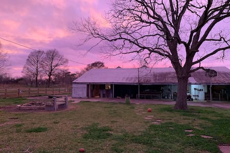 Homey 19 Acre Homestead Room for Rent