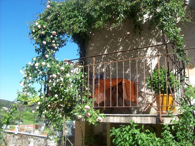 Charming village house in Provence  - La Gaude - Huis