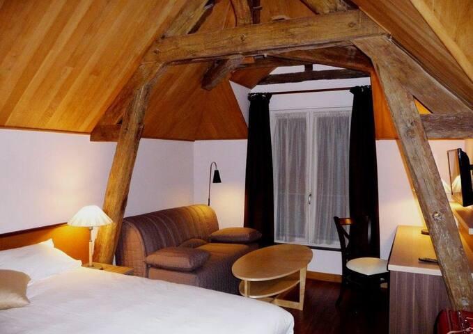 F1bis Central, lambris chêne, clim. - Tours - Apartment