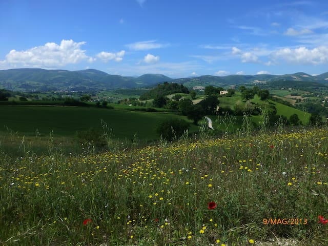 Stanza panoramica in campagna - San Severino Marche - Hus