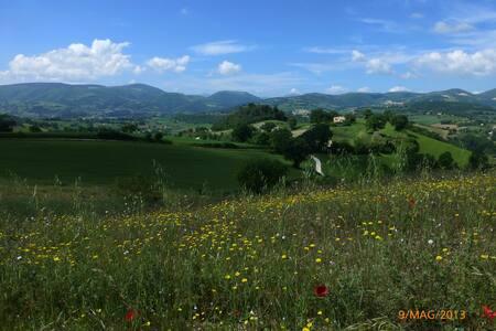 Stanza panoramica in campagna - San Severino Marche