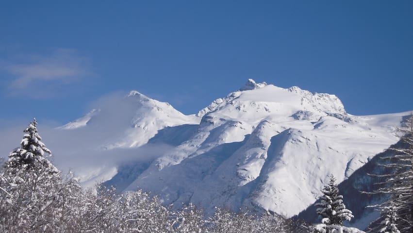 Cosy et spacieux A 5 min des pistes - Lanslebourg-Mont-Cenis - Huoneisto
