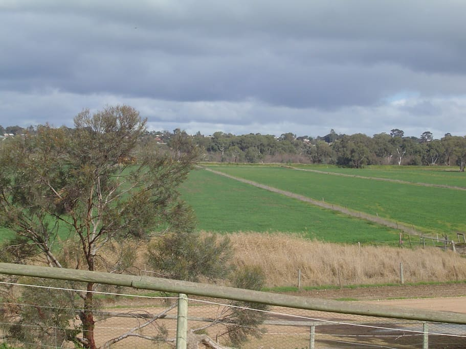 In a rural setting, and yet only 3 km from Murray Bridge.