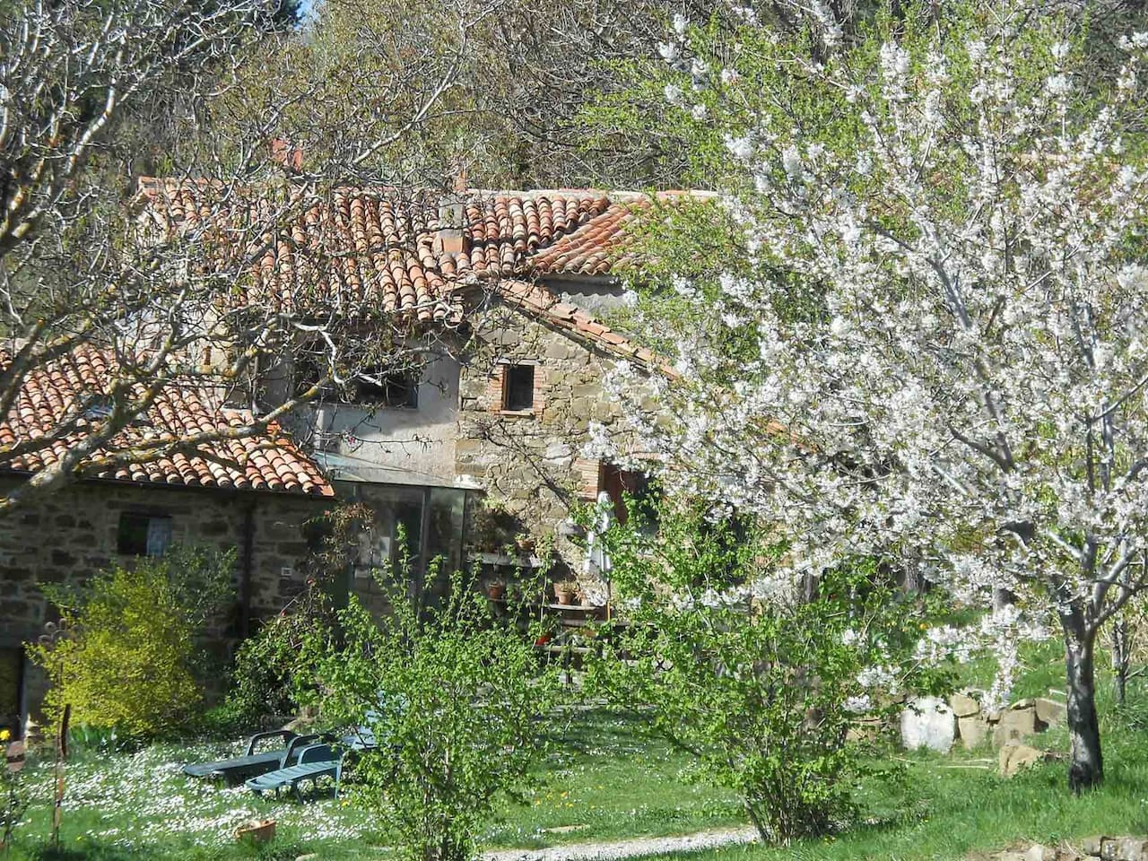 LUCA'S HOUSE AGRITURISMO IN MAREMMA
