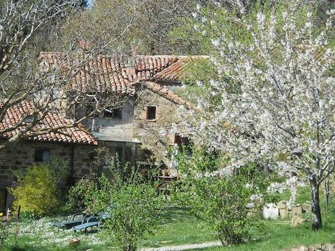 Luca's Farmhouse in Maremma