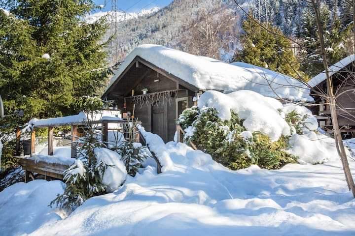 Chamonix cabin nestled in woodland - Chamonix - Chalet