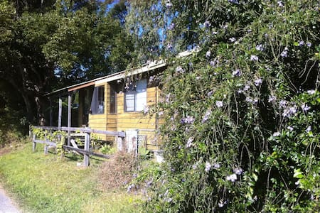 Cabin available for Blues Festival - Wilsons Creek