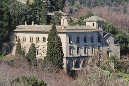Une chambre dans un château - San-Martino-di-Lota