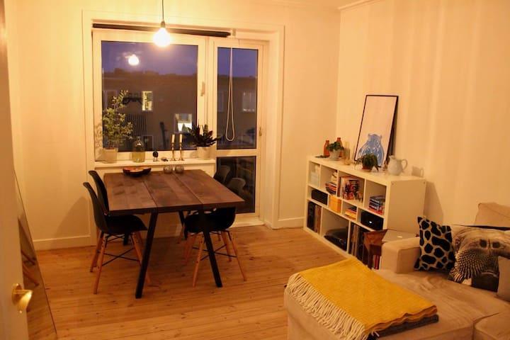 Cosy apartment in Copenhagen - Kopenhagen - Appartement