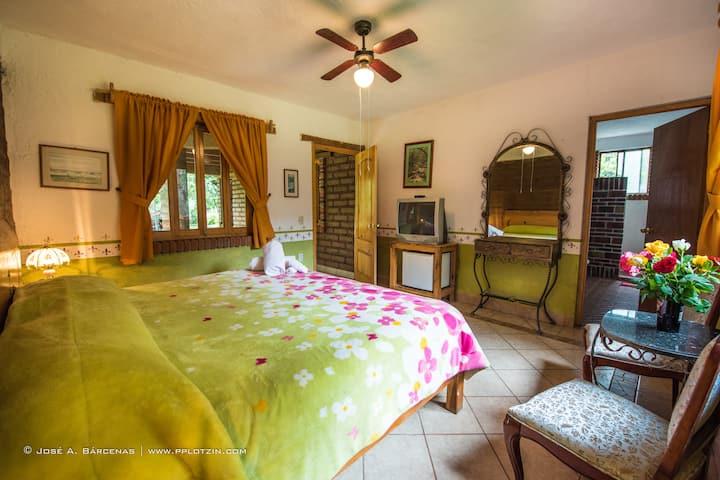 hotel pomarrosa cama king zize y vista al jardín