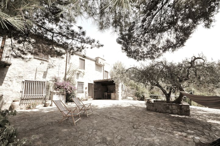 CasaDelVento, stone cottage in the olive trees