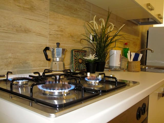 HOLIDAY HOUSE ON THE SEA OF ROME!!! - Lido di Ostia - Appartement