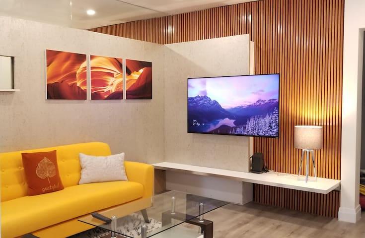 Luxury room on the Danforth (private washroom)