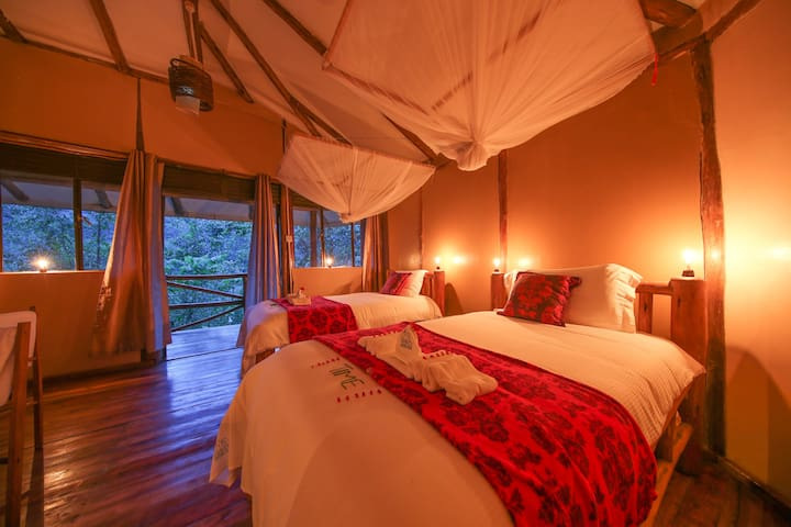Gorilla Safari Lodge Bwindi room 2